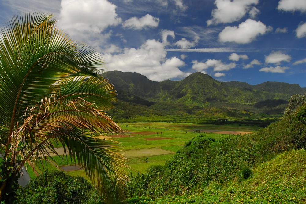 Hawaii's Kauai has a beautifully lush landscape, the result of a high annual rainfall.